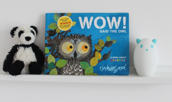 WOW! Said the Owl by Tim Hopgood